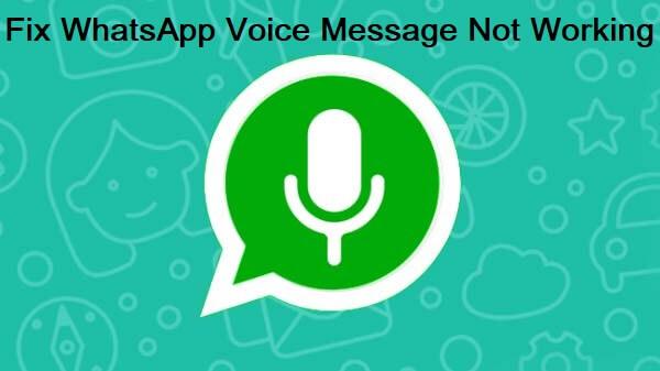 fix whatsapp voice message not working