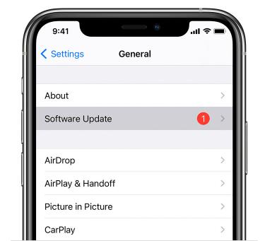 Update iOS version