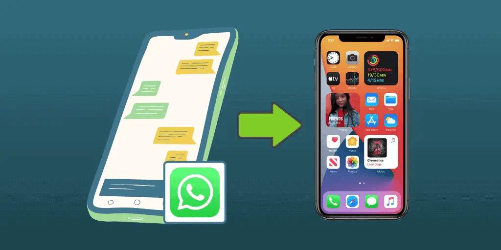 transfer whatsapp
